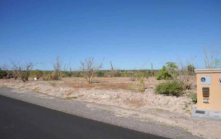 Foto de terreno habitacional en venta en  , el centenario, la paz, baja california sur, 1137959 No. 06
