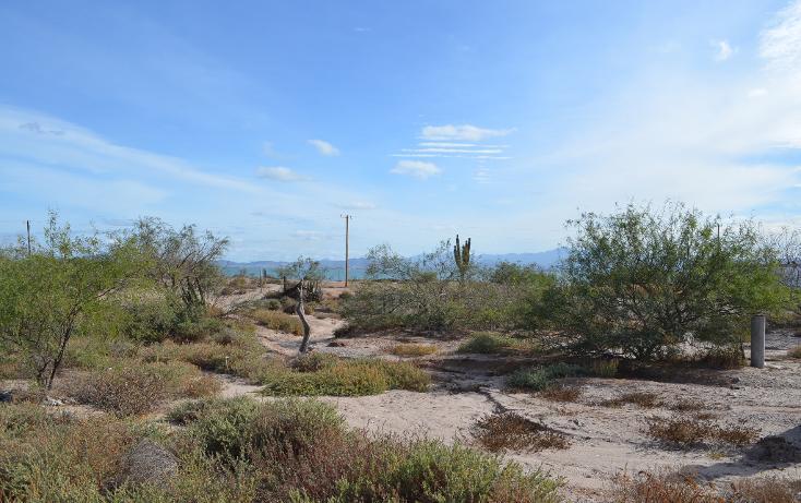 Foto de terreno habitacional en venta en  , el centenario, la paz, baja california sur, 1140761 No. 05