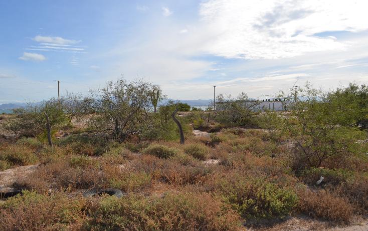Foto de terreno habitacional en venta en  , el centenario, la paz, baja california sur, 1140761 No. 06