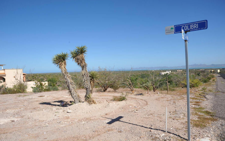 Foto de terreno habitacional en venta en  , el centenario, la paz, baja california sur, 1195293 No. 05