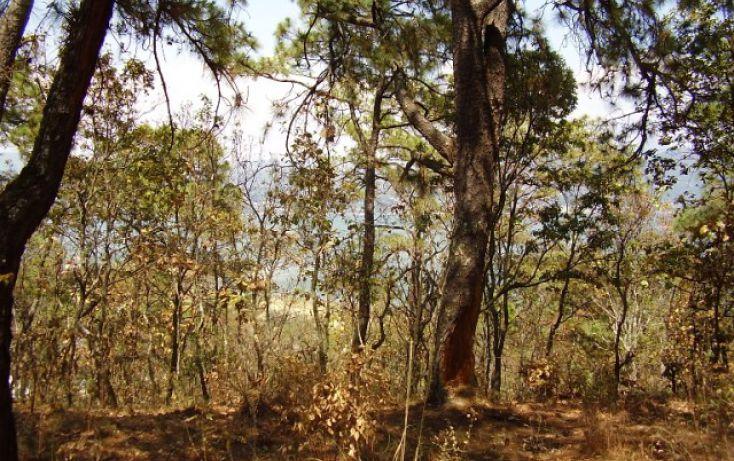 Foto de terreno habitacional en venta en el cerrillo sn, el cerrillo, valle de bravo, estado de méxico, 1698034 no 04