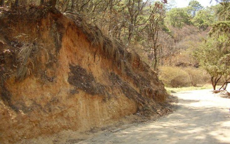 Foto de terreno habitacional en venta en el cerrillo sn, el cerrillo, valle de bravo, estado de méxico, 1698034 no 05