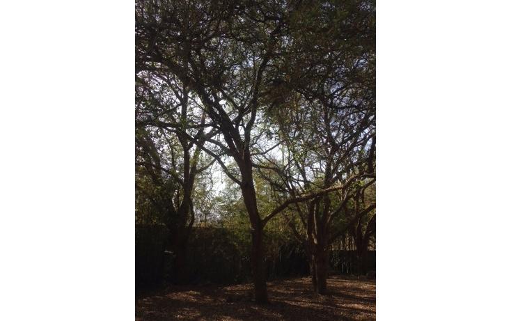 Foto de terreno habitacional en venta en  , el cerrito, santiago, nuevo león, 1720256 No. 05