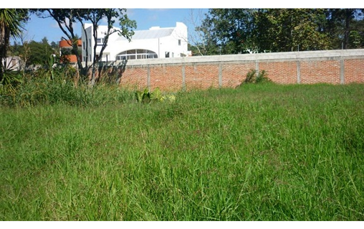 Foto de terreno habitacional en venta en  , el chico, emiliano zapata, veracruz de ignacio de la llave, 1080279 No. 03
