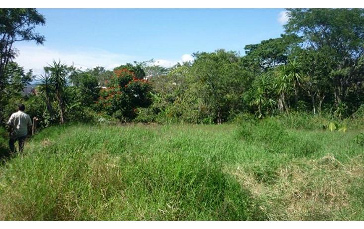 Foto de terreno habitacional en venta en  , el chico, emiliano zapata, veracruz de ignacio de la llave, 1080279 No. 05