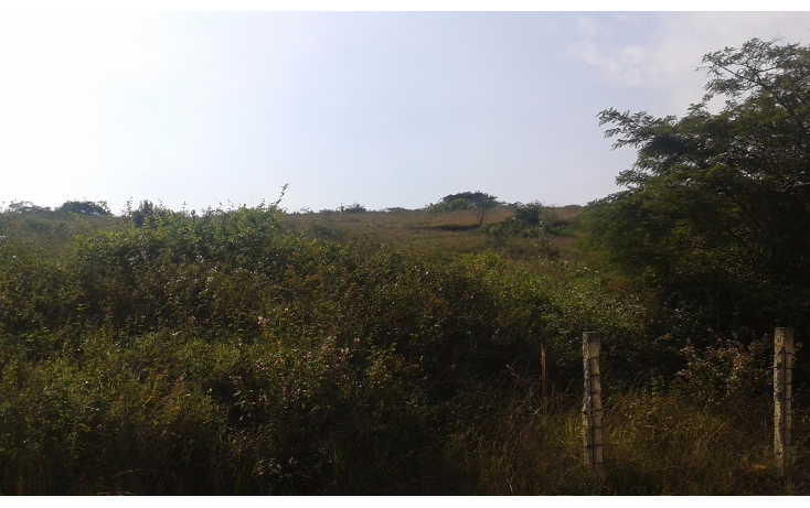 Foto de terreno habitacional en venta en  , el chico, emiliano zapata, veracruz de ignacio de la llave, 1489775 No. 07