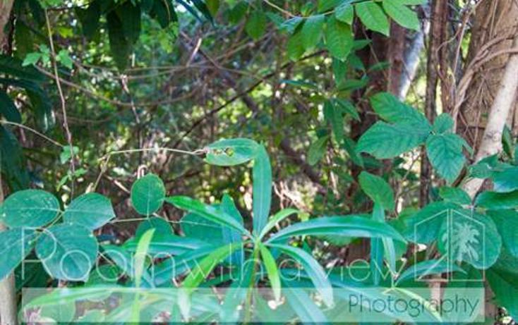 Foto de terreno habitacional en venta en, el cielo, solidaridad, quintana roo, 1024923 no 06