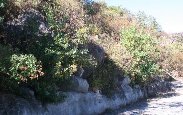 Foto de terreno habitacional en venta en  , valle de bravo, valle de bravo, méxico, 1973369 No. 02