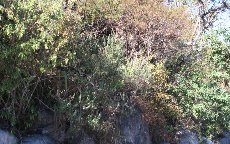 Foto de terreno habitacional en venta en  , valle de bravo, valle de bravo, méxico, 1973369 No. 03