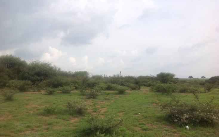 Foto de terreno comercial en venta en  , el colorado (el soyatal), aguascalientes, aguascalientes, 1264059 No. 02