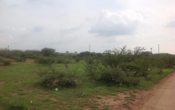 Foto de terreno comercial en venta en  , el colorado (el soyatal), aguascalientes, aguascalientes, 1264059 No. 03