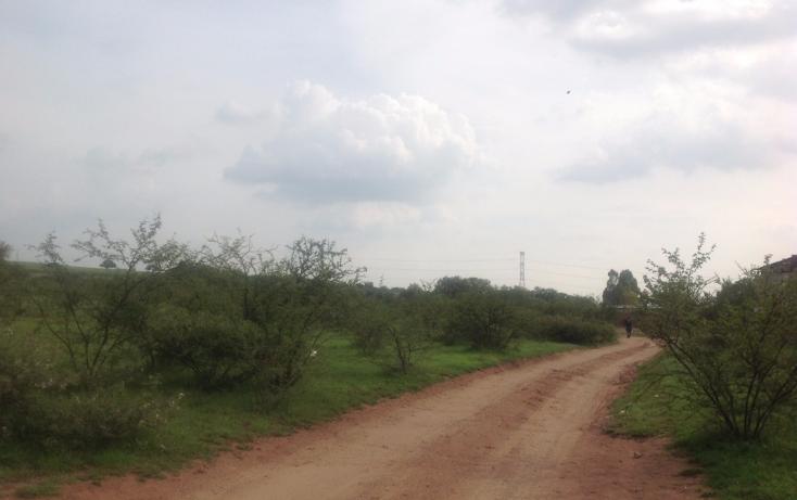 Foto de terreno comercial en venta en  , el colorado (el soyatal), aguascalientes, aguascalientes, 1264059 No. 04