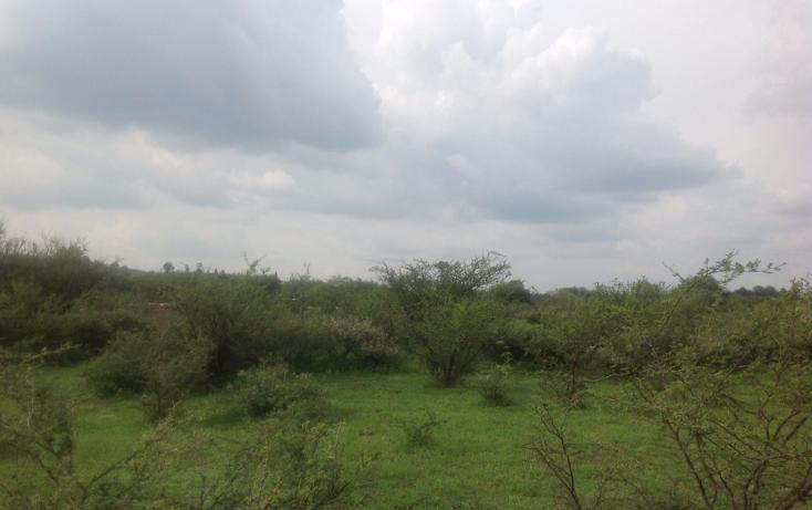 Foto de terreno comercial en venta en  , el colorado (el soyatal), aguascalientes, aguascalientes, 1264059 No. 05