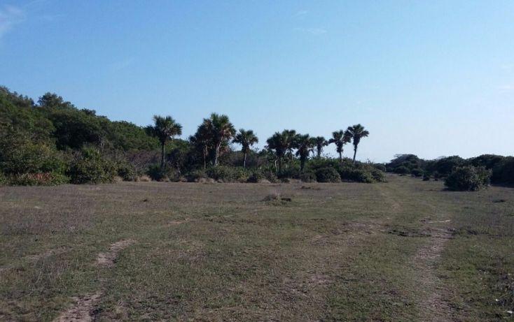 Foto de terreno comercial en venta en, el copital, medellín, veracruz, 1723744 no 02