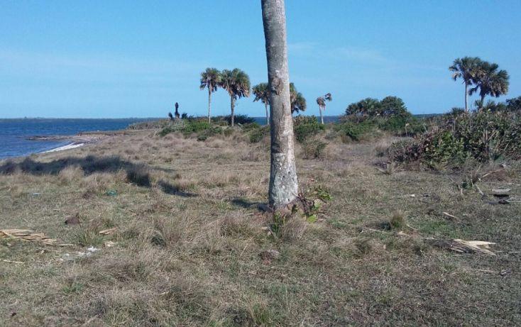 Foto de terreno comercial en venta en, el copital, medellín, veracruz, 1723744 no 03