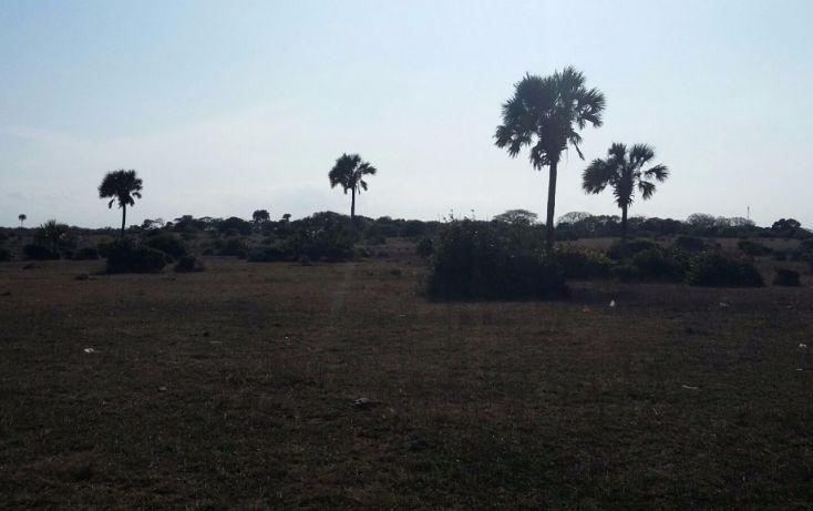 Foto de terreno comercial en venta en, el copital, medellín, veracruz, 1723744 no 04