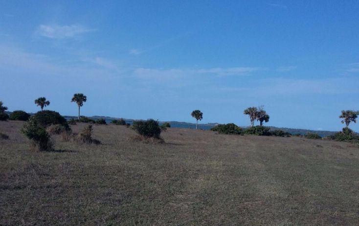 Foto de terreno comercial en venta en, el copital, medellín, veracruz, 1723744 no 06