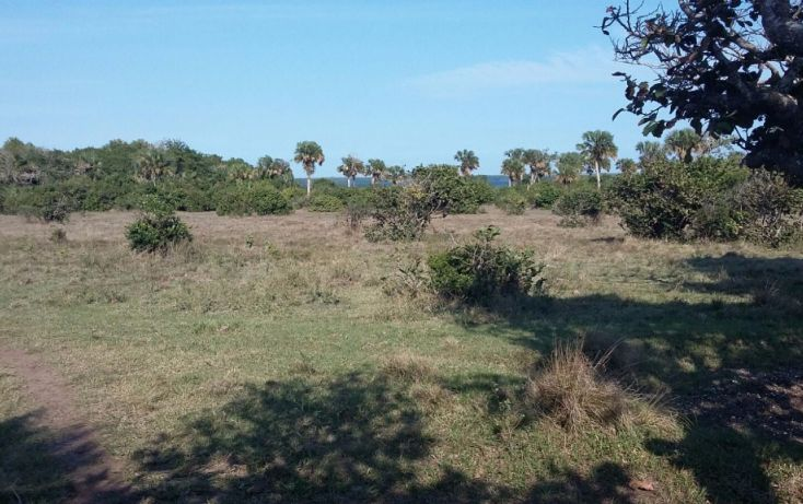 Foto de terreno comercial en venta en, el copital, medellín, veracruz, 1723744 no 07