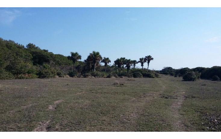 Foto de terreno comercial en venta en  , el copital, medell?n, veracruz de ignacio de la llave, 1723736 No. 06