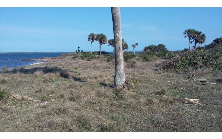 Foto de terreno comercial en venta en  , el copital, medell?n, veracruz de ignacio de la llave, 1723736 No. 07