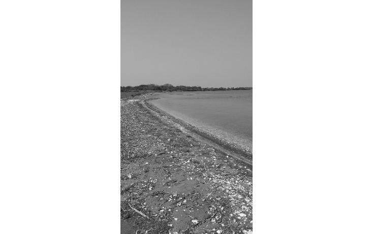 Foto de terreno comercial en venta en  , el copital, medellín, veracruz de ignacio de la llave, 1723744 No. 01