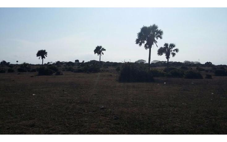 Foto de terreno comercial en venta en  , el copital, medellín, veracruz de ignacio de la llave, 1723744 No. 04