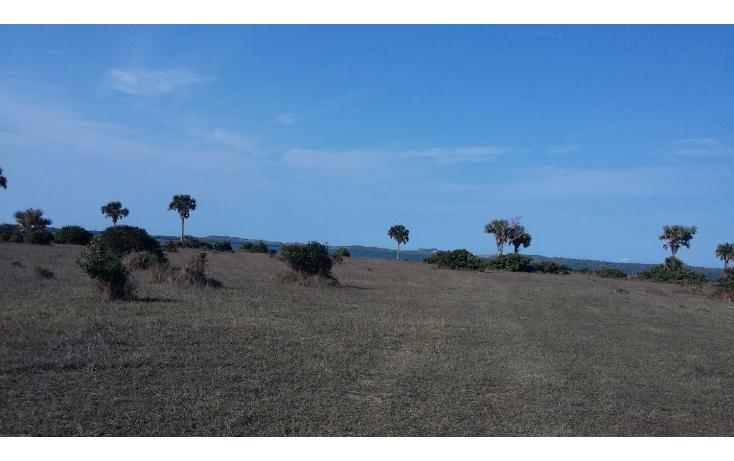 Foto de terreno comercial en venta en  , el copital, medellín, veracruz de ignacio de la llave, 1723744 No. 06
