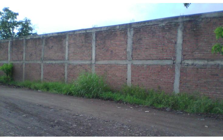 Foto de terreno industrial en renta en  , el diez, culiac?n, sinaloa, 1203199 No. 07