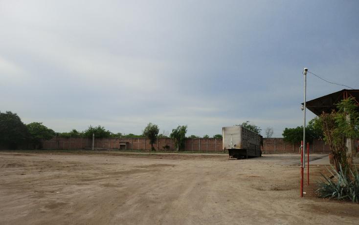 Foto de terreno industrial en renta en  , el diez, culiac?n, sinaloa, 1203199 No. 08