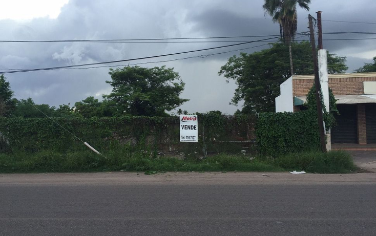 Foto de terreno comercial en venta en  , el diez, culiacán, sinaloa, 2628796 No. 05