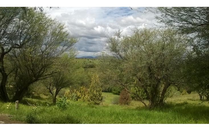 Foto de terreno habitacional en venta en  , el ed?n, aguascalientes, aguascalientes, 1076485 No. 06