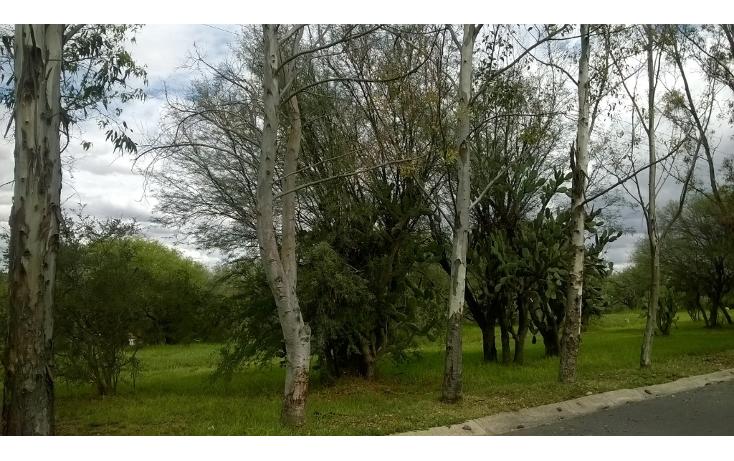 Foto de terreno habitacional en venta en  , el edén, aguascalientes, aguascalientes, 1076485 No. 08