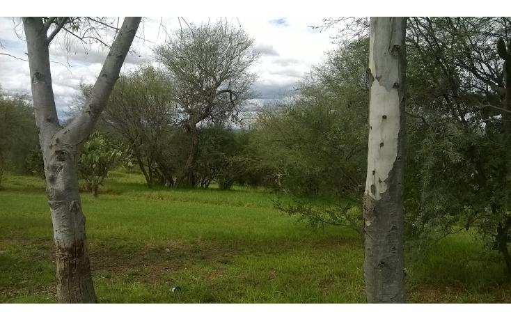 Foto de terreno habitacional en venta en  , el ed?n, aguascalientes, aguascalientes, 1076485 No. 09