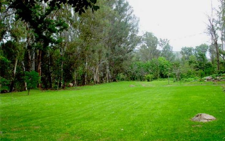 Foto de terreno comercial en venta en  , el fort?n, zapopan, jalisco, 1276391 No. 02