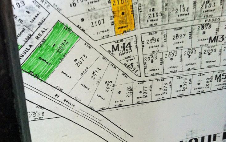 Foto de terreno habitacional en venta en  , el fresnito, zapotlán el grande, jalisco, 1246681 No. 03