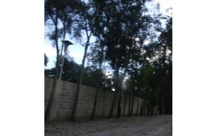 Foto de terreno habitacional en venta en  , el fresnito, zapotlán el grande, jalisco, 1246681 No. 04