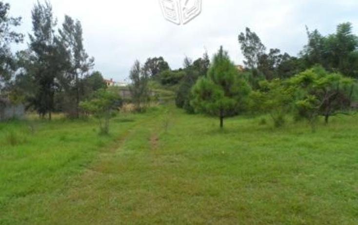 Foto de terreno habitacional en venta en  , el fresnito, zapotlán el grande, jalisco, 1572680 No. 04