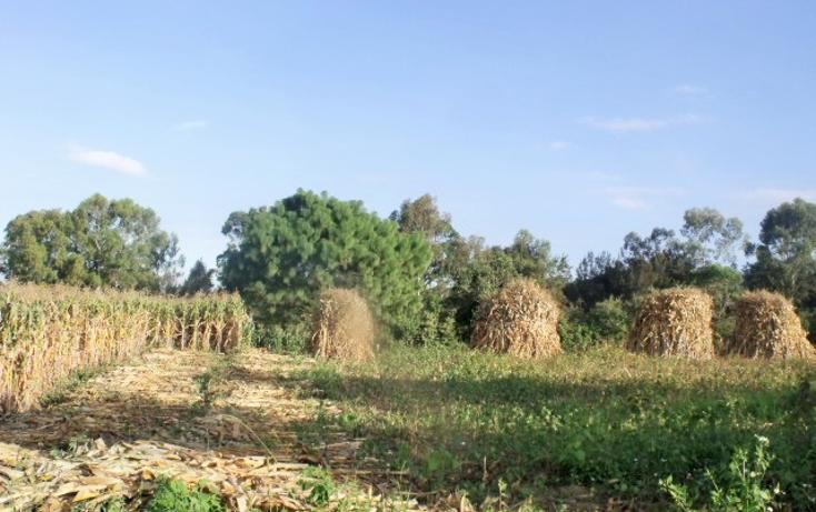 Foto de terreno comercial en venta en  , el fresnito, zapotl?n el grande, jalisco, 1641438 No. 07