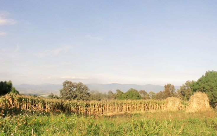 Foto de terreno comercial en venta en  , el fresnito, zapotl?n el grande, jalisco, 1641438 No. 08