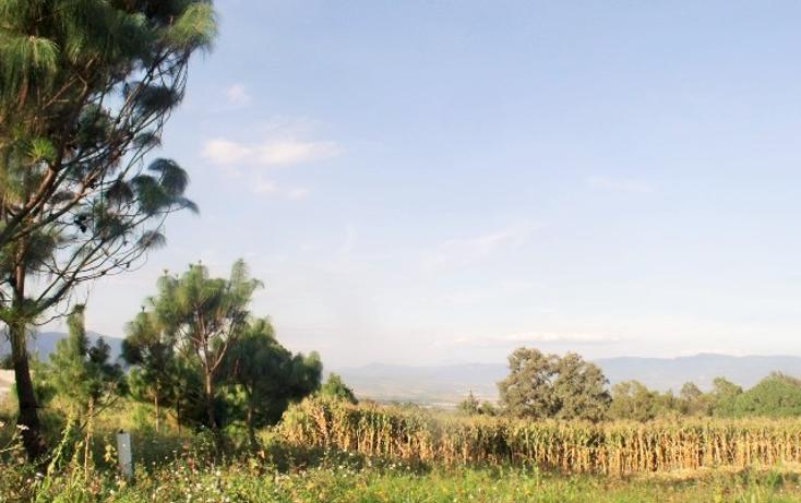 Foto de terreno comercial en venta en  , el fresnito, zapotl?n el grande, jalisco, 1641438 No. 09