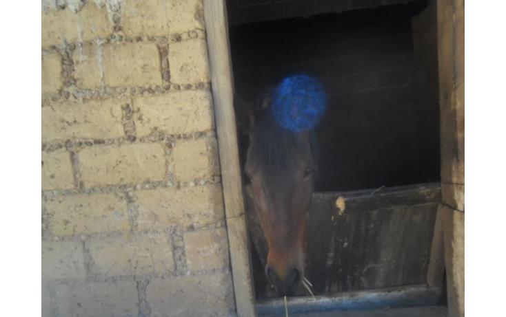 Foto de rancho en renta en el gavillero 30, san nicolás totolapan, la magdalena contreras, df, 759085 no 17