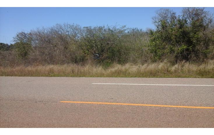 Foto de terreno comercial en venta en  , el habal, mazatlán, sinaloa, 1293151 No. 01