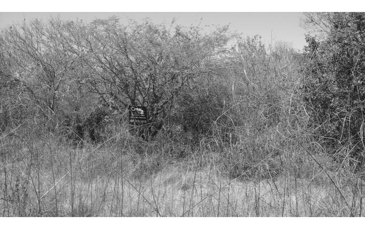 Foto de terreno comercial en venta en  , el habal, mazatlán, sinaloa, 1293151 No. 05