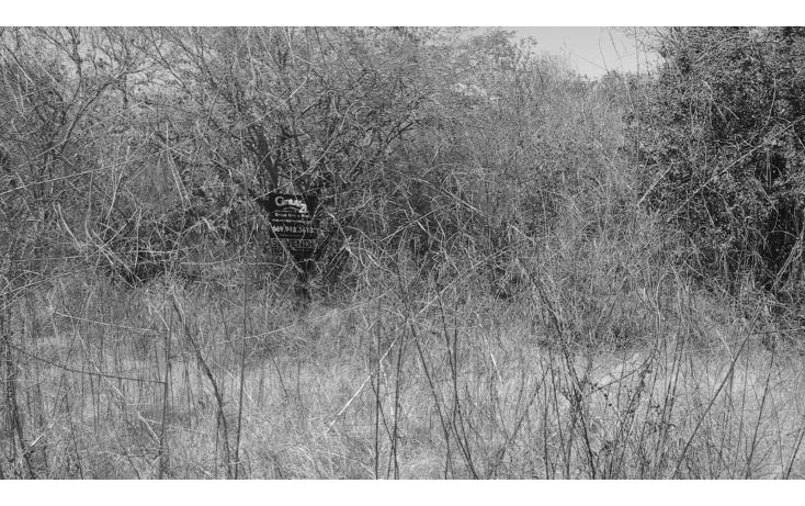 Foto de terreno comercial en venta en  , el habal, mazatlán, sinaloa, 1293151 No. 06