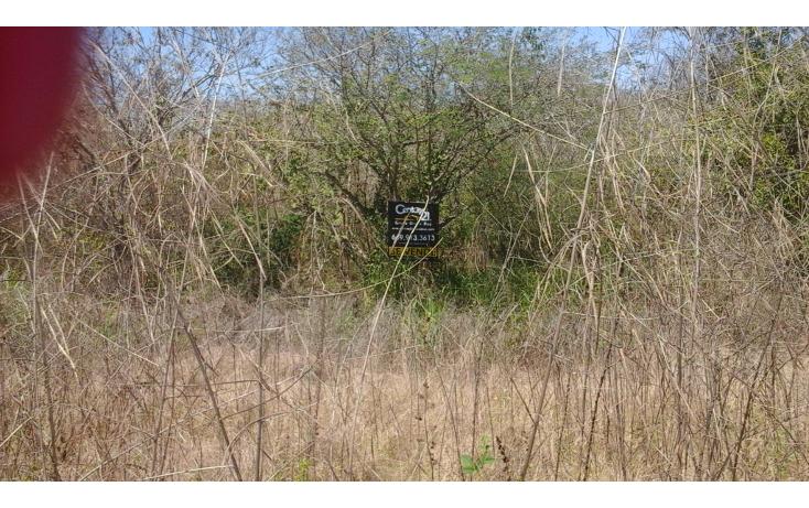 Foto de terreno comercial en venta en  , el habal, mazatlán, sinaloa, 1293151 No. 07