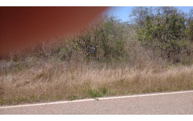 Foto de terreno comercial en venta en  , el habal, mazatlán, sinaloa, 1293151 No. 08