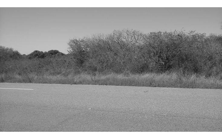 Foto de terreno comercial en venta en  , el habal, mazatlán, sinaloa, 1293151 No. 10