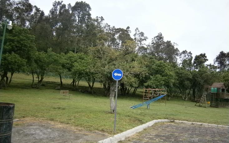 Foto de terreno habitacional en venta en  , el hallazgo, san pedro cholula, puebla, 1291269 No. 03
