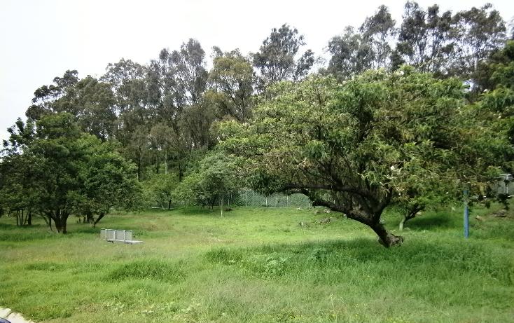 Foto de terreno habitacional en venta en  , el hallazgo, san pedro cholula, puebla, 1291269 No. 04