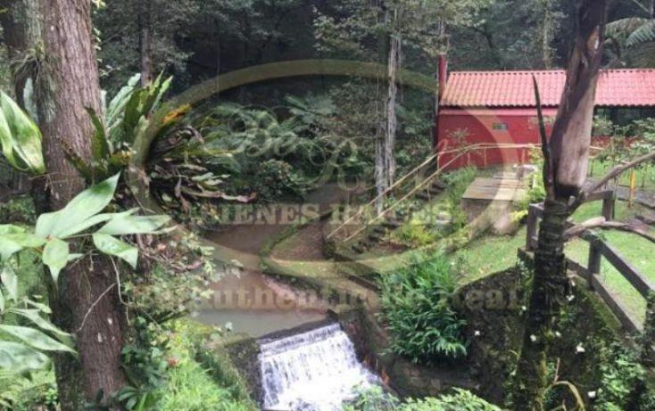 Foto de terreno habitacional en venta en, el haya, xalapa, veracruz, 1750272 no 05